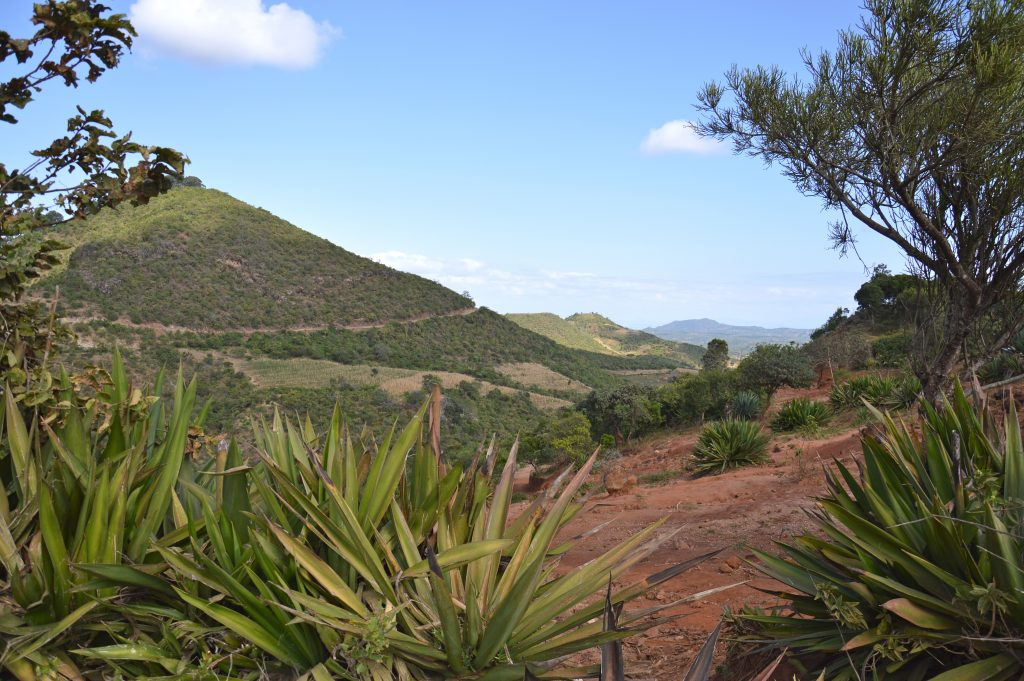 Endallah paysage