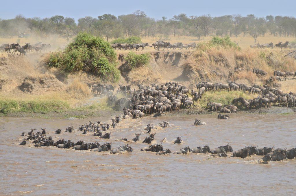grande migration river