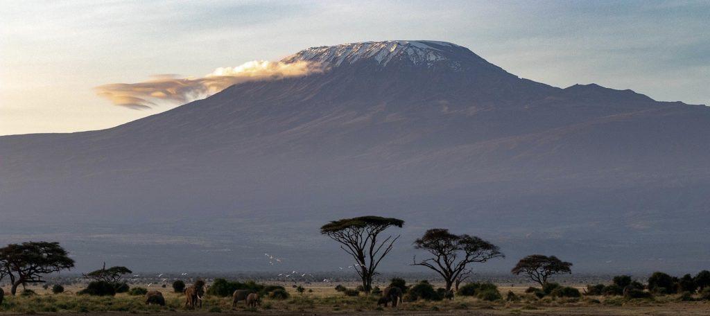 le kilimanjaro en afrique