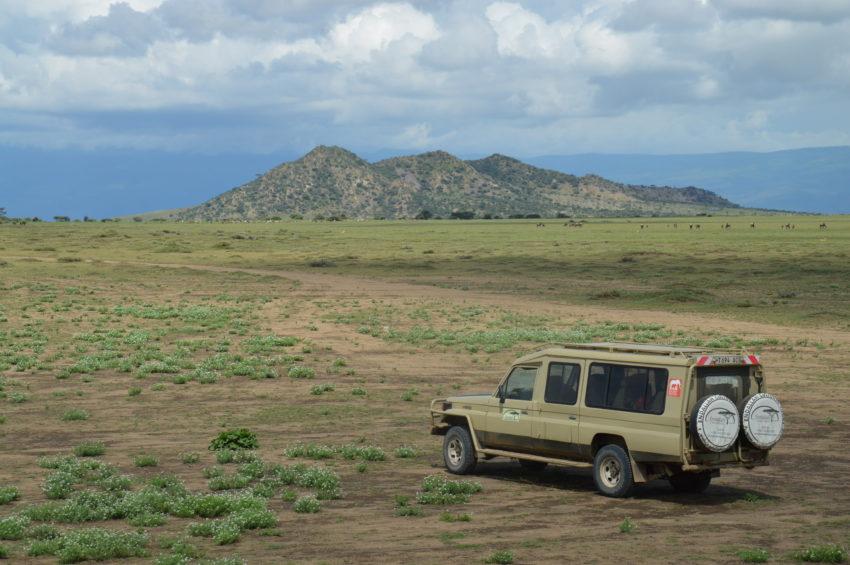 Zone de conservation tanzanie
