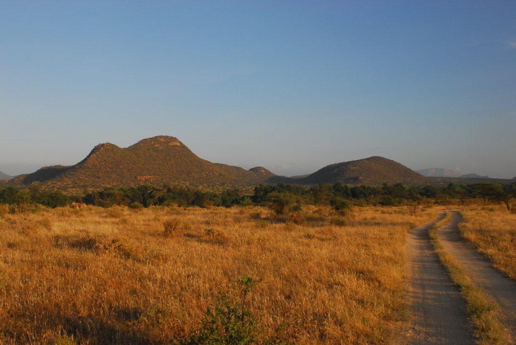 samburu réserve national kenya